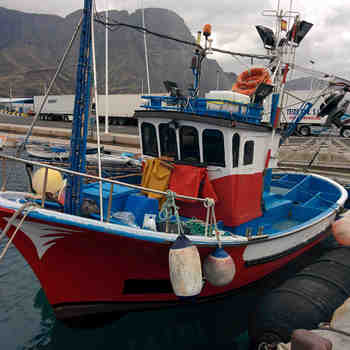<p>Moteurs in bord diesel pour bateaux professionnels, Service mondial</p>